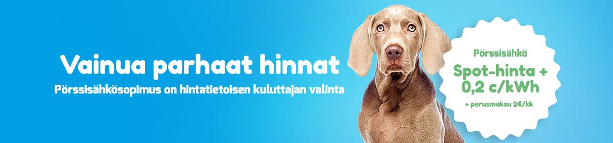 Kuvassa koira, jota käytetään pörssisähkömainoksessa, vainua parhaat hinnat pörssisähkösopimus on hintatietoisen kuluttajan valinta. pörssisähkö spot-hinta 0.2c/kwh + perusmaksu 2€/kk